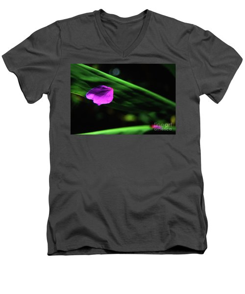 Plumeria Flower Petal On Plumeria Leaf- Kauai- Hawaii Men's V-Neck T-Shirt
