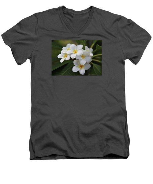Plumeria - Golden Hearts Men's V-Neck T-Shirt by Kerri Ligatich