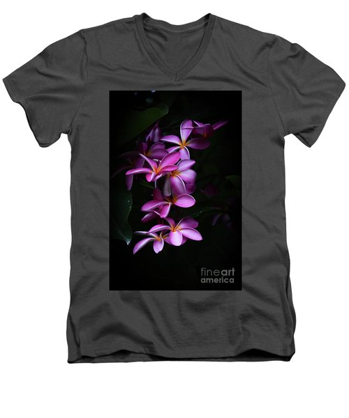 Plumeria Light Men's V-Neck T-Shirt by Kelly Wade