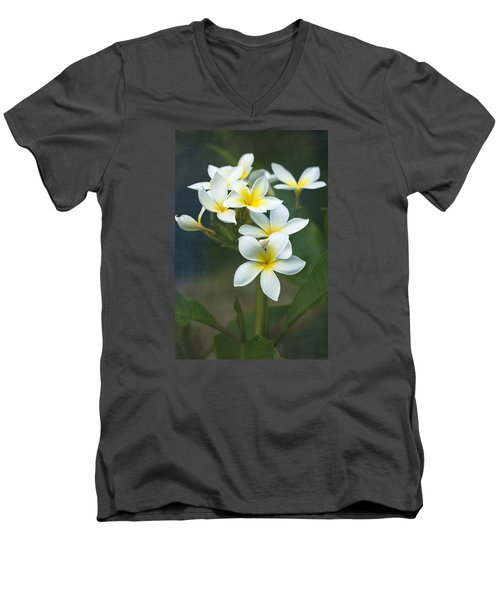 Plumerias On A Cloudy Day Men's V-Neck T-Shirt