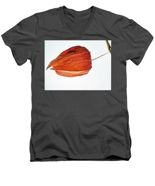 Pod Bird Men's V-Neck T-Shirt