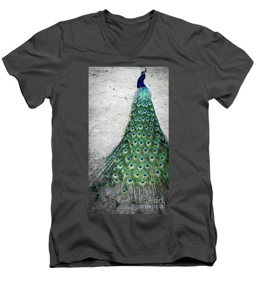 Poised Peacock Men's V-Neck T-Shirt