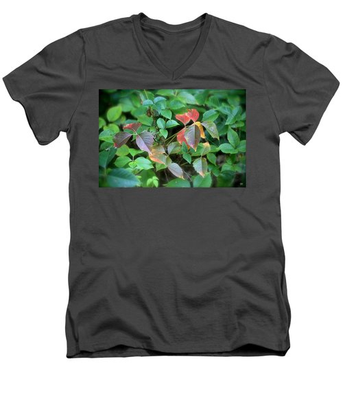 Poison Ivy In August Men's V-Neck T-Shirt