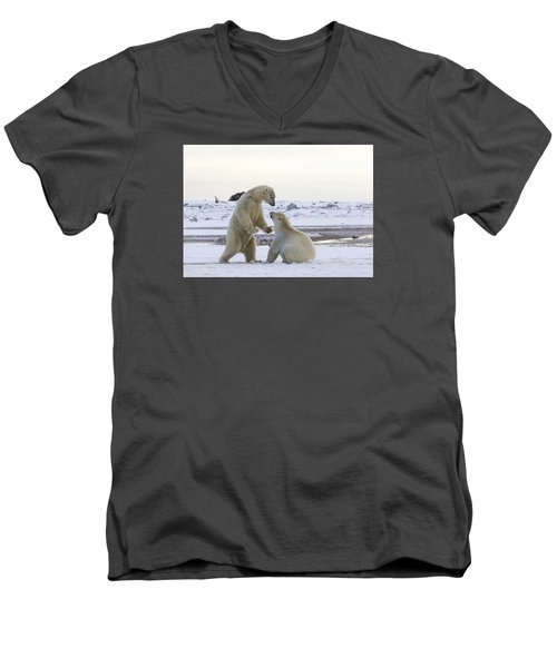 Polar Bear Play-fighting Men's V-Neck T-Shirt