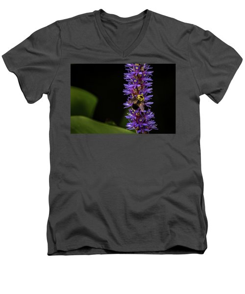 Men's V-Neck T-Shirt featuring the photograph Pollen Collector 3 by Jay Stockhaus