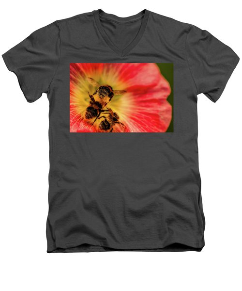 Pollination Men's V-Neck T-Shirt by Verena - Timschenko