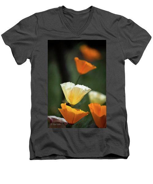 Poppy Glow Men's V-Neck T-Shirt