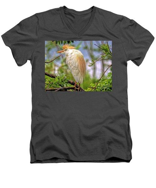 Portrait Of A Cattle Egret Men's V-Neck T-Shirt