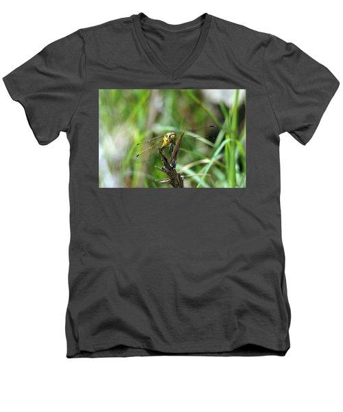Portrait Of A Dragonfly Men's V-Neck T-Shirt