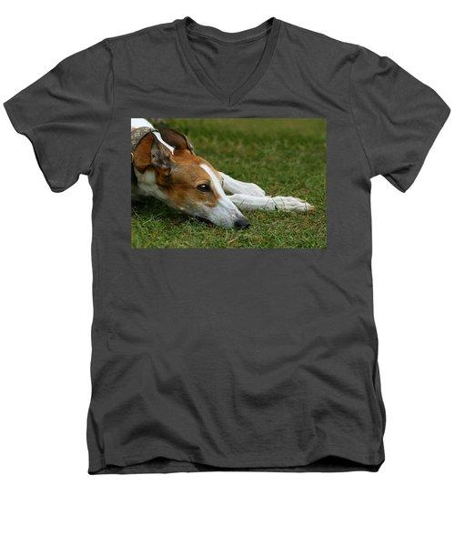 Portrait Of A Greyhound - Soulful Men's V-Neck T-Shirt by Angela Rath