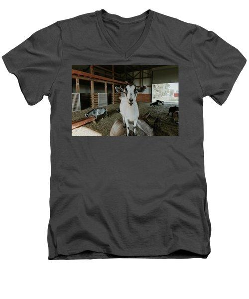 Portrait Of A Happy Goat Men's V-Neck T-Shirt