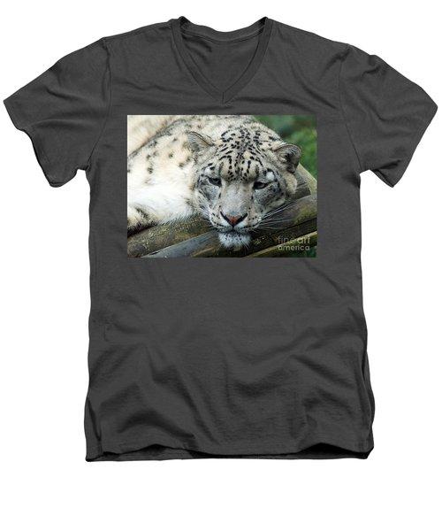 Portrait Of A Snow Leopard Men's V-Neck T-Shirt