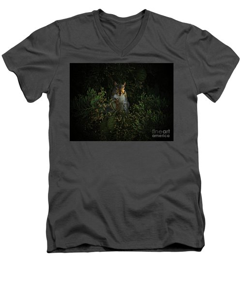 Portrait Of A Squirrel Men's V-Neck T-Shirt