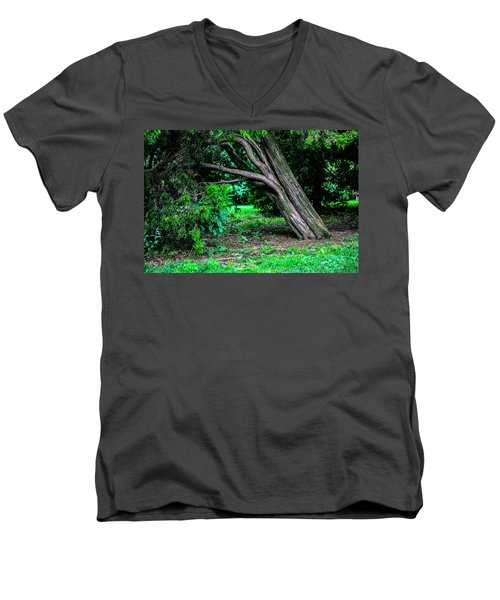Men's V-Neck T-Shirt featuring the photograph Portrait Of A Tree by Madeline Ellis