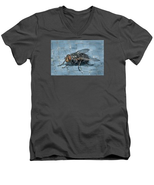Portrait Of A Young Insect As A Fly Men's V-Neck T-Shirt by Greg Nyquist