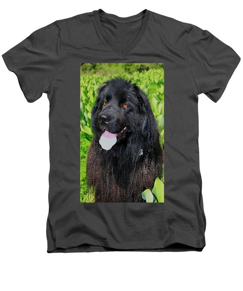 Portrait Of Sierra Men's V-Neck T-Shirt by Sean Sarsfield