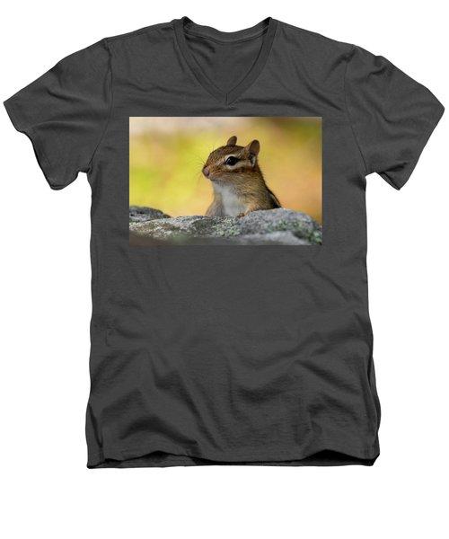 Posing Chipmunk Men's V-Neck T-Shirt