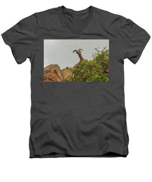 Posing For The Camera 2 Men's V-Neck T-Shirt