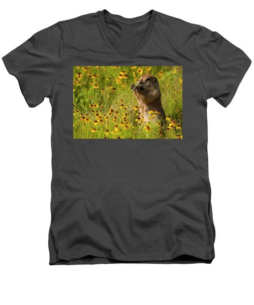 Prairie Dog Lunch Men's V-Neck T-Shirt