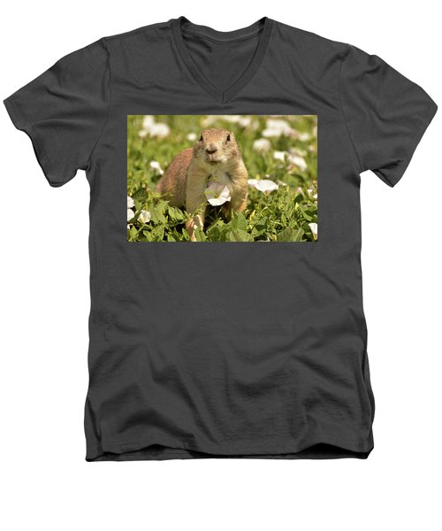 Prairie Dog Men's V-Neck T-Shirt by Nancy Landry