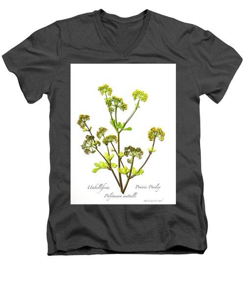 Prairie Parsley Men's V-Neck T-Shirt