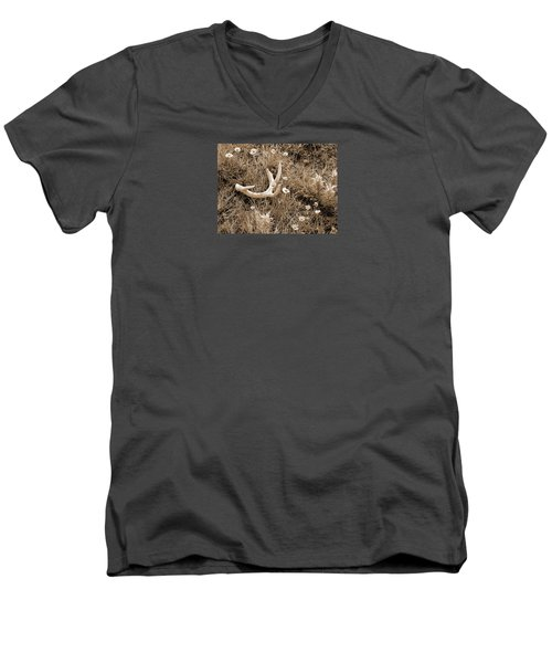 Prairie Spring Men's V-Neck T-Shirt