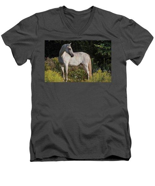 Pre Beauty Men's V-Neck T-Shirt