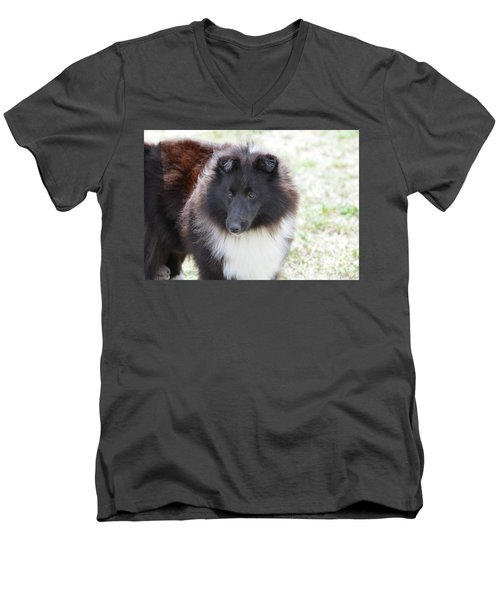 Pretty Black And White Sheltie Dog Men's V-Neck T-Shirt by DejaVu Designs