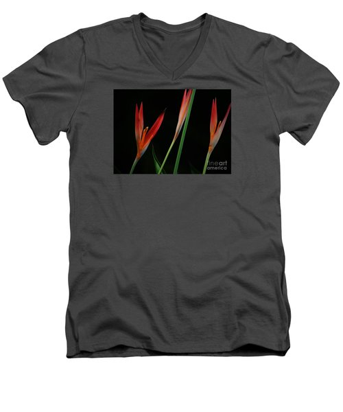 Pretty In Orange Men's V-Neck T-Shirt by Pamela Blizzard