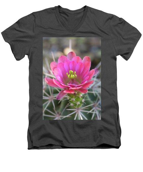 Men's V-Neck T-Shirt featuring the photograph Pretty In Pink Hedgehog  by Saija Lehtonen
