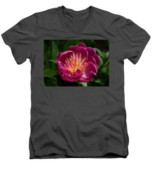 Pretty Pink Peony Flower Men's V-Neck T-Shirt