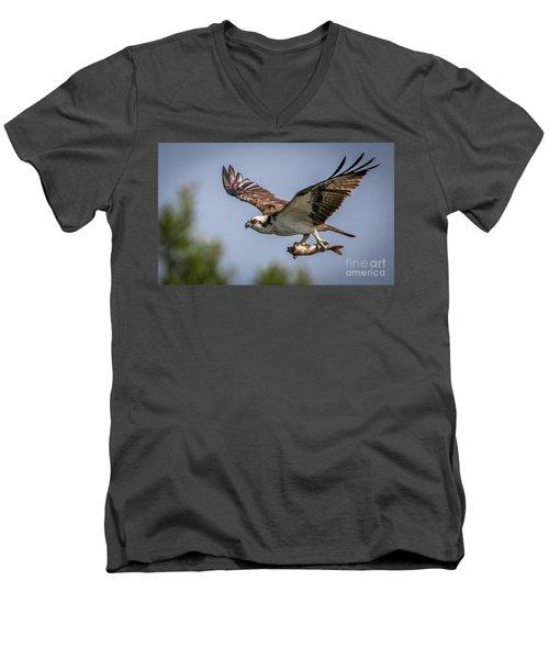 Prey In Talons Men's V-Neck T-Shirt