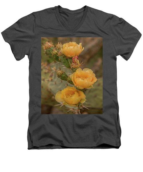 Prickly Pear Blossom Trio Men's V-Neck T-Shirt