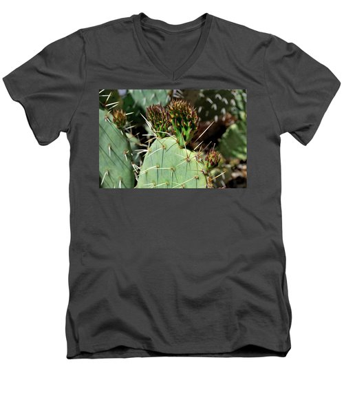 Prickly Pear Buds Men's V-Neck T-Shirt