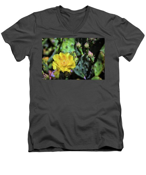 Prickly Pear Cactus Flower On Assateague Island Men's V-Neck T-Shirt