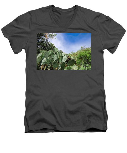 Prickly Pear Hillside Men's V-Neck T-Shirt by Gina Savage