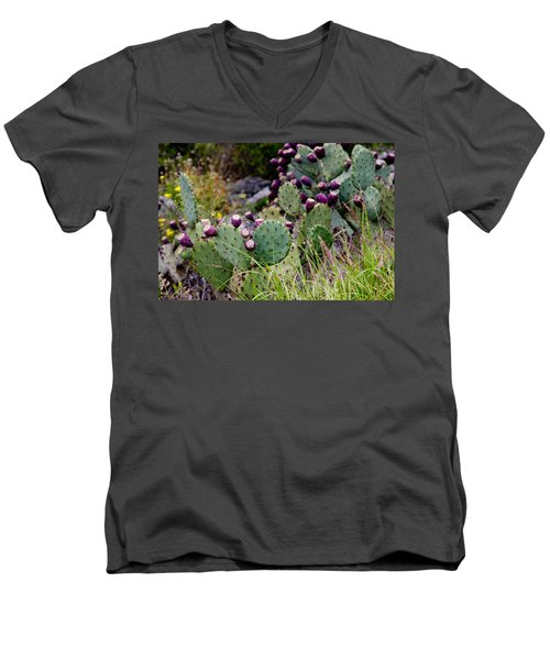 Prickly Pear Men's V-Neck T-Shirt