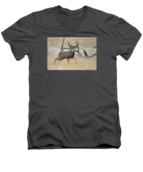 Prince Of The Prairie  Men's V-Neck T-Shirt