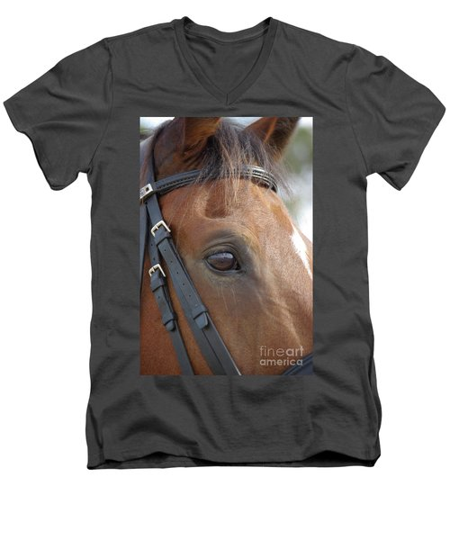Men's V-Neck T-Shirt featuring the photograph Prinz by Jim and Emily Bush