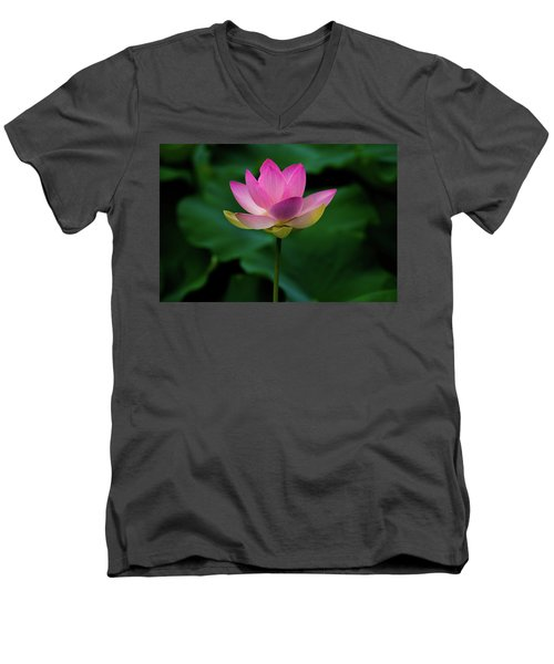 Profile Of A Lotus Lily Men's V-Neck T-Shirt