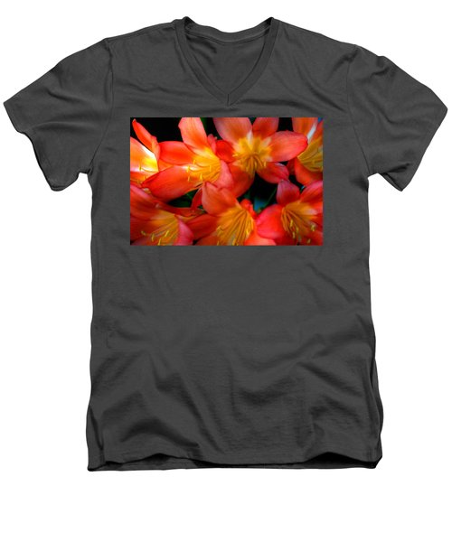 Profusion Of Red Men's V-Neck T-Shirt