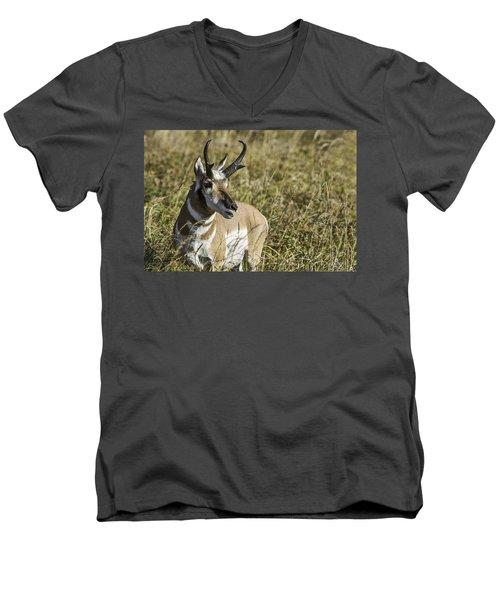 Prong Horn Men's V-Neck T-Shirt