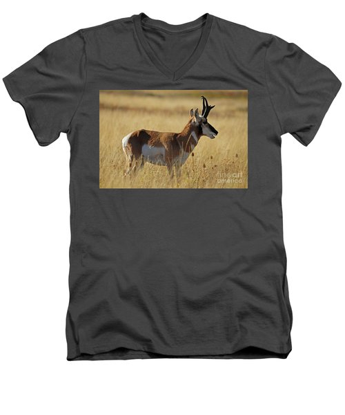 Pronghorn Antelope Men's V-Neck T-Shirt by Cindy Murphy - NightVisions