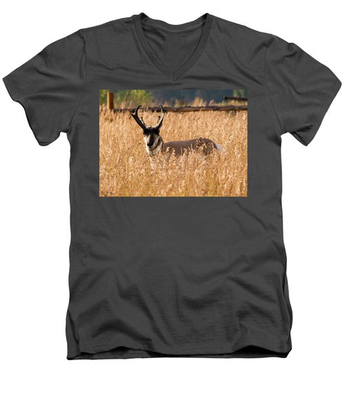 Men's V-Neck T-Shirt featuring the photograph Pronghorn by Jennifer Ancker
