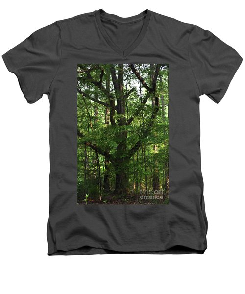 Men's V-Neck T-Shirt featuring the photograph Protecting The Children by Skip Willits