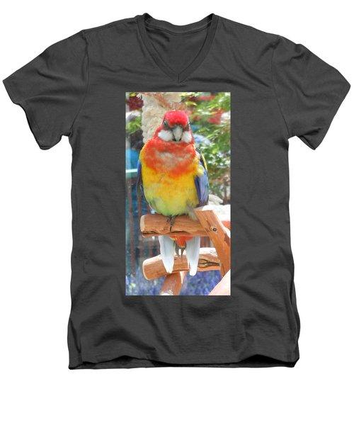 Multi-color Pudgy Budgie Men's V-Neck T-Shirt