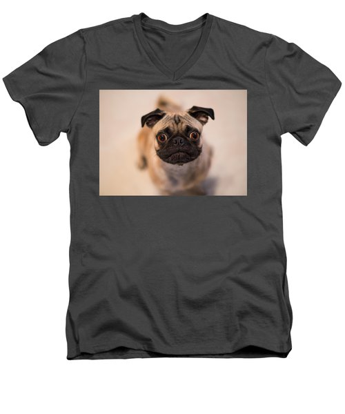 Men's V-Neck T-Shirt featuring the photograph Pug Dog by Laura Fasulo