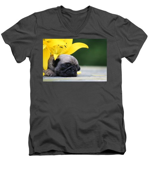 Puggy Face Bouqet Men's V-Neck T-Shirt