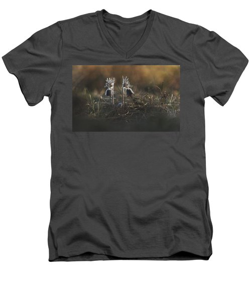 Men's V-Neck T-Shirt featuring the photograph Pulsatilla Nigricans by Davorin Mance