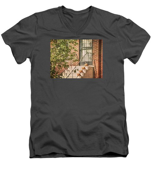 Pumpkin Portico Men's V-Neck T-Shirt